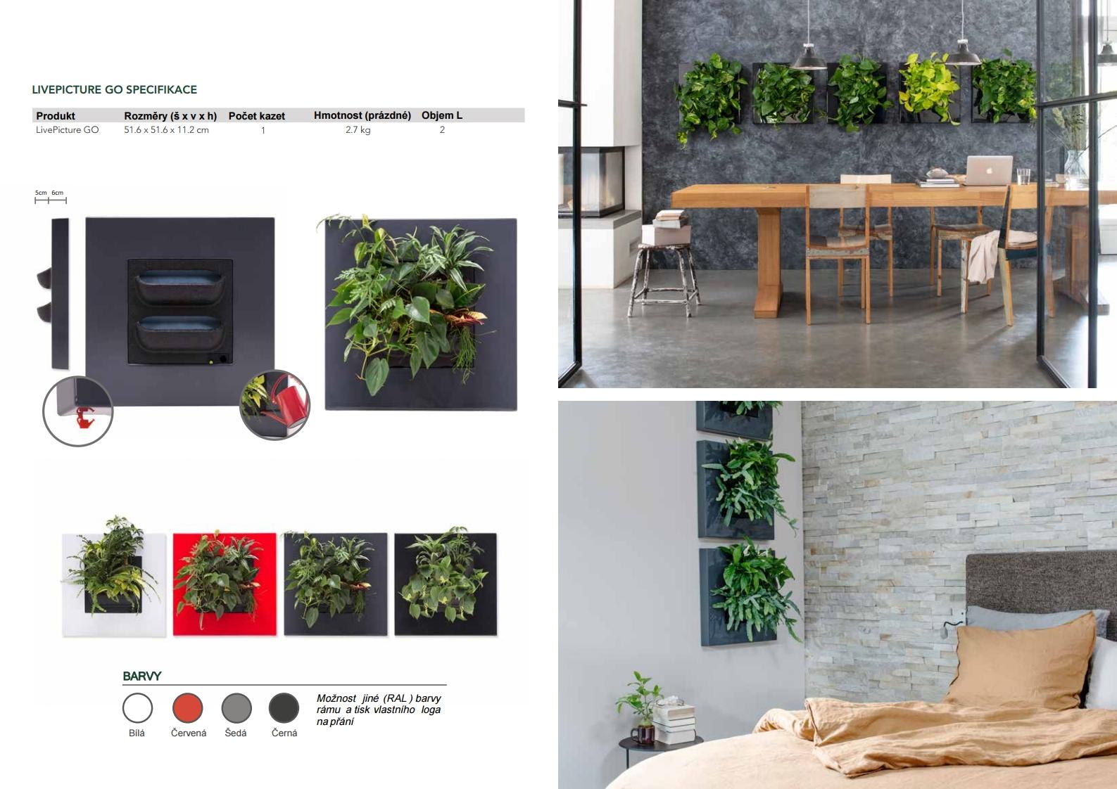 Živé obrazy - katalog